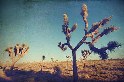 Joshua Tree Photograph - Yes I'm Still Running by Laurie Search
