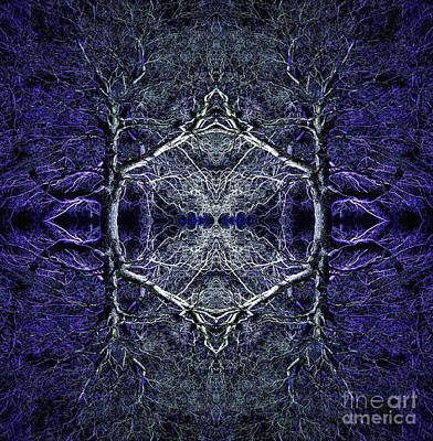 Symmetry Photograph - Yggdrasil by Tim Gainey