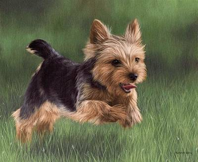 Yorkshire Terrier Painting Print by Rachel Stribbling