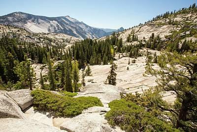 Yosemite National Park Print by Ashley Cooper
