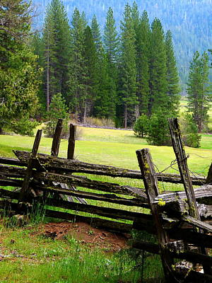 Lichen-covered Fence Photograph - Yosemite Wawona Meadow Fence by Jeff Lowe