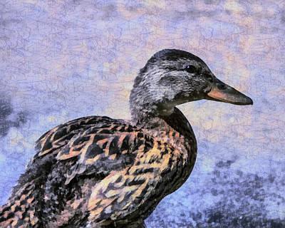 Birds Digital Art - Young Duck Smile by Priya Ghose