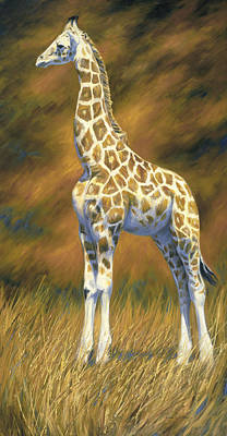 Giraffe Painting - Young Giraffe by Lucie Bilodeau