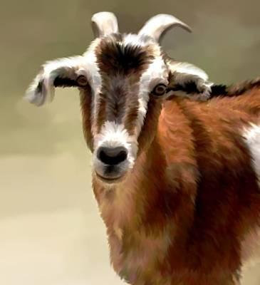 Goat Mixed Media - Young Goat by Karen Sheltrown