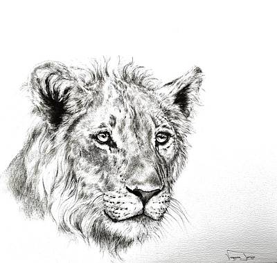 Painting - Young Lion Portrait by Vanessa Lomas