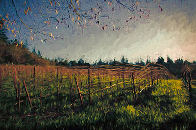 Young Vines On Trellis Print by John K Woodruff