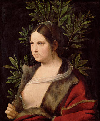 Giorgione Painting - Young Woman. Laura by Giorgione