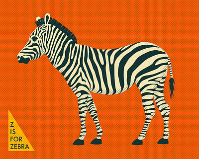 Zebra Digital Art - Z Is For Zebra by Jazzberry Blue