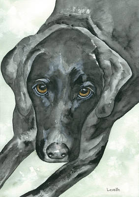 Black Lab Watercolor Painting - Zak by Kimberly Lavelle