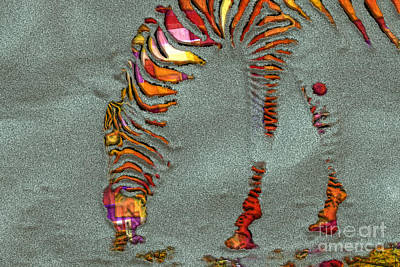 Variations Digital Art - Zebra Art - 64spc by Variance Collections