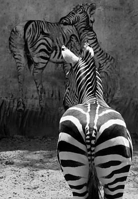 Zebra Print by Veronika Limonov