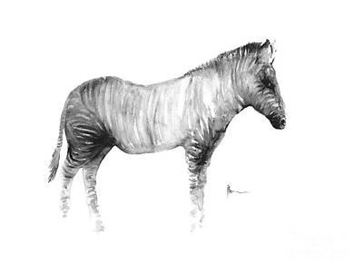 Zebra Mixed Media - Zebra Watercolor Art Print Painting by Joanna Szmerdt