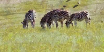 Zebra Mixed Media - Zebras In Africa by Dan Sproul
