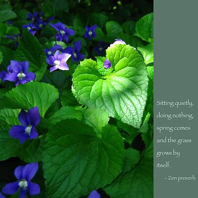 Zen Proverb With Violets Print by Heidi Hermes