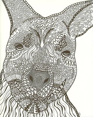Marsupial Drawing - Zen Wallaby by Jennie  Richards