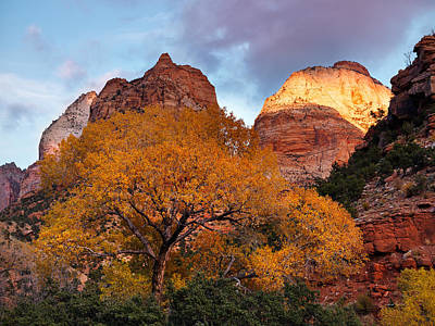 Southern Utah Photograph - Zion Cliffs Autumn by Leland D Howard