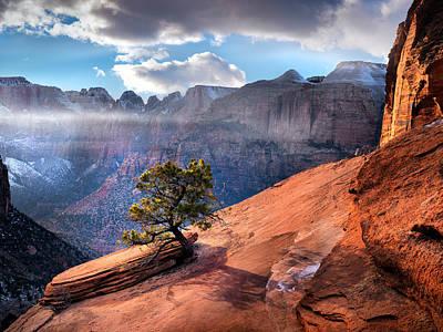Sheer Photograph - Zion National Park Light by Leland D Howard