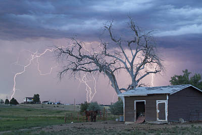 Country Horses Lightning Storm Ne Boulder County Co 76 Print by James BO  Insogna