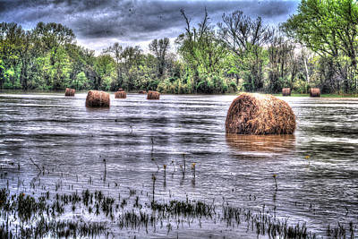 Arkansas Photograph - 0804-3586 Flooded Hay by Randy Forrester