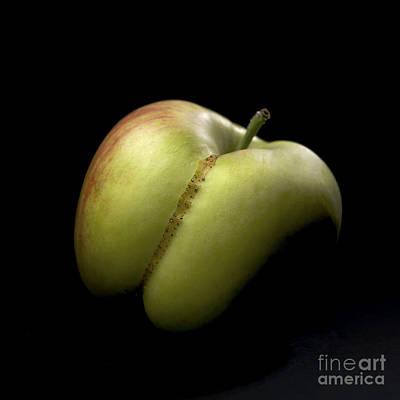 Single Object Photograph - Apple by Bernard Jaubert