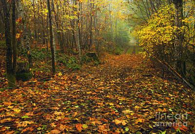 Autumn Lane Original by Mike  Dawson