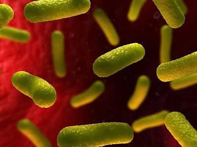 Bacterial Infection, Artwork Print by Sciepro