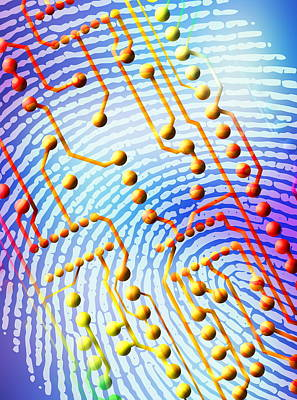 Civil Liberties Photograph - Biometric Fingerprint Scan by Pasieka