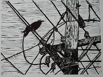 Lino Drawing - Bird On A Wire by William Cauthern