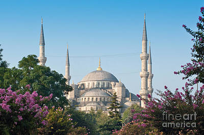 Istanbul Photograph - Blue Mosque by Andrew  Michael