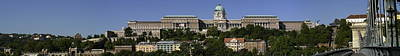Budapest Sightseeing Tours Photograph - Budapest Panoramic by Odon Czintos