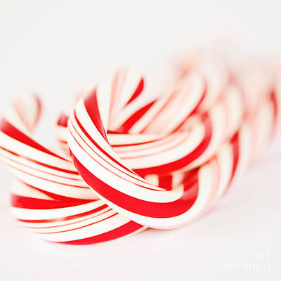 Candy Canes Print by Kim Fearheiley