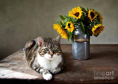 Artistic Digital Art - Cat And Sunflowers by Nailia Schwarz