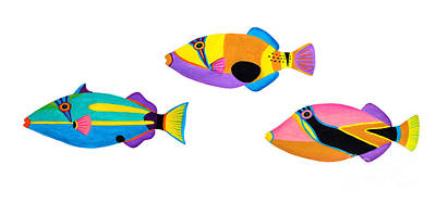 Collection Of Trigger Fishes Print by Opas Chotiphantawanon