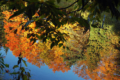 Falls Photograph - Colorful Reflections by LeeAnn McLaneGoetz McLaneGoetzStudioLLCcom