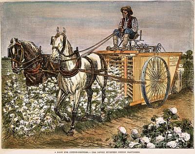 Cotton Harvester, 1886 Print by Granger