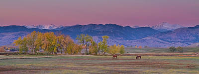 Country Morning Print by James BO  Insogna