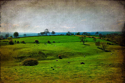 Cow Mixed Media - Countryside by Svetlana Sewell