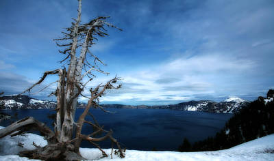 Deep Blue Photograph - Crater Lake by Bonnie Bruno