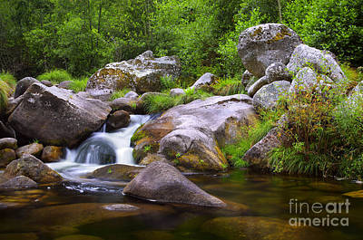 Fluid Photograph - Creek by Carlos Caetano
