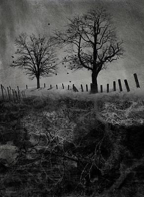 Dark Roost Print by Ron Jones