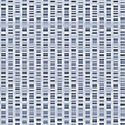 Dna Sequences Print by Pasieka