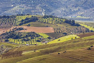 Farmland Near Casabermeja, Spain. Print by Ken Welsh