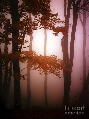 Foggy Misty Trees Print by Mike Nellums