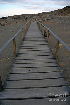 Footbridge On Volcanic Landscape Print by Sami Sarkis