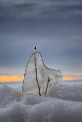 Heather Rivet Photograph - Frozen In Time by Heather  Rivet
