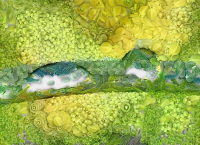 Autumn Road Fractal Digital Art - Fruits by Odon Czintos