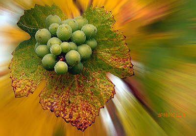 Grapes Print by Jean Noren