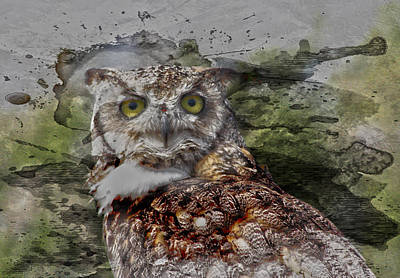 Great Horned  Print by JC Photography and Art