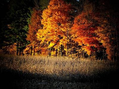 Indiana Autumn Print by Michael L Kimble