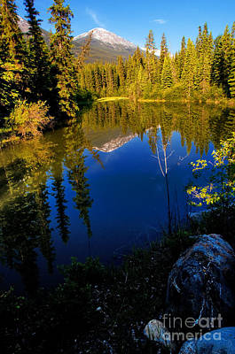Jasper - Miette River Print by Terry Elniski
